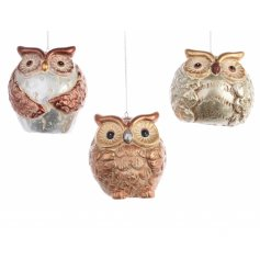 An assortment of 3 owl decorations in a mix of metallic colours with hanger.