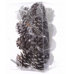 A lovely traditional box of hanging pinecones. Completed with a light dusting of white for a frosty feel