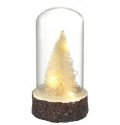 This woodland inspired glass dome will make a great accessory to any home