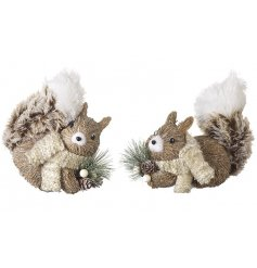 2 Assorted Christmas Squirrel Decorations With Scarf & Pinecone