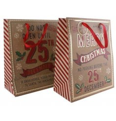 An assortment of 2 christmas gift bags