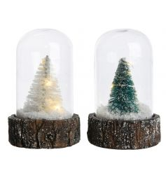 This festive assorted set of christmas Tree scenes in a glass dome