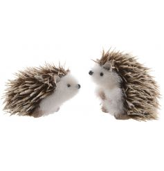 Set with their dried fur spikes and fuzzy bodies, this cute free standing duo will sit perfectly anywhere