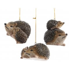 This sweet assortment of polyresin hedgehogs will add a touch of the woodlands to any christmas tree this year.