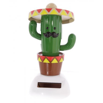 Cactus With Sombaro Solar Pal