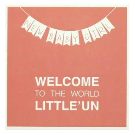 Welcome baby girl greeting card 34800 occasions new baby this new baby girl card welcomes a new born to the world in those exact words m4hsunfo