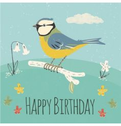 An attractive Blue Tit design birthday card with envelope.