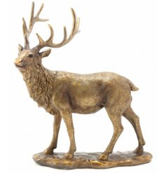 A fine quality bronzed stag ornament. A chic country living item for the home.