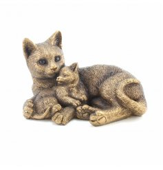 An adorable duo of cats from the popular Reflections Bronzed Range from Leonardo