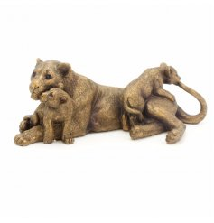 From the popular Bronzed collection from Leonardo are these adorable playing lion cubs