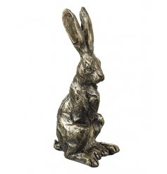 A beautiful chic inspired designed sitting hare