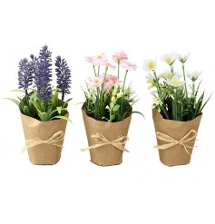 An assortment of 3 colourful Spring flowers with raffia bows. A pretty home decoration this season.