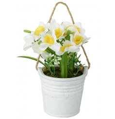A hanging plant pot with Spring daffodils. A pretty floral item for the home.