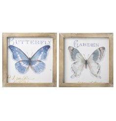 A mix of 2 framed butterfly prints. A beautiful addition to any interior space.