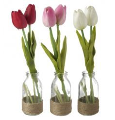 A sweet assortment of 3 bunched tulips of assorted colours