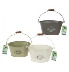 Oval Vintage Planter With Hang Tag 3asstd