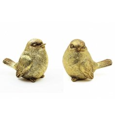 A pair of gold resin robin christmas decorations