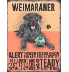 A mini metal sign with a Weimaraner illustration with characteristics listed.