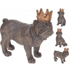 3 assorted posed dog figures, finished in a rustic coating and topped with a golden crown