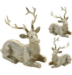 An assortment of 2 antique style laying reindeer ornaments in gold.