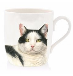 Add a warm tabby touch to your home with this cute little cat printed china mug