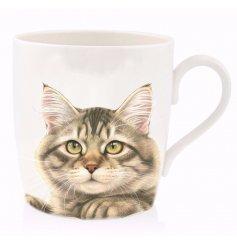 Brown Tabby Cat China Mug