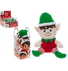 A christmas elf soft toy in carrier bag