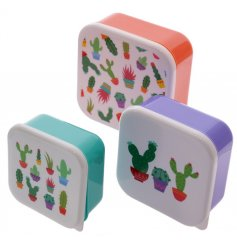 A set of 3 Lauren Billingham Cactus Lunch Boxes