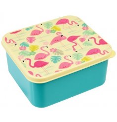 A square lunch box in the popular Flamingo Bay design.