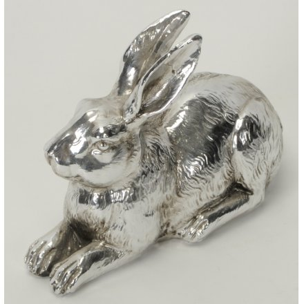 Silver Lounged Rabbit