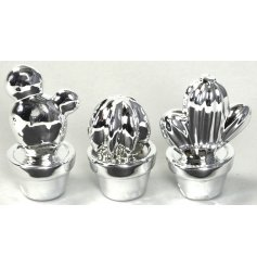 A stylish assortment of silver toned cactus pots