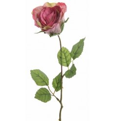 A pretty pink rose of a stem. A timeless floral decoration for the home.