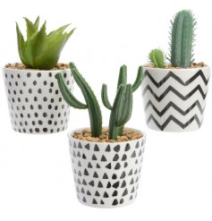 Add a modern luxe feel to any space with these stylish geometric inspired potted decorations