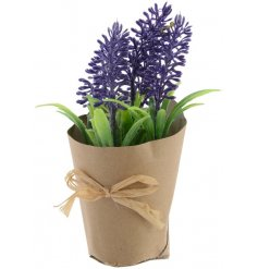 A charming miniature lavender flower set within a brown paper pot with a rustic jute bow.