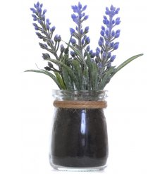Faux lavender complete with a glass pot and string bow