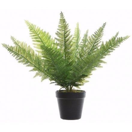 Potted Artificial Fern 55cm