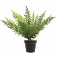 An artificial potted Fern in a matte black pot