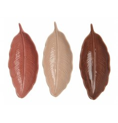 3 beautiful assorted feather inspired porcelain plates