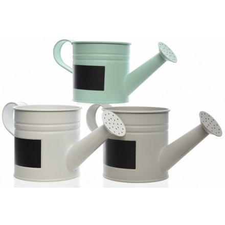 Watering Can With Blackboard Label, 3 Assorted 22cm