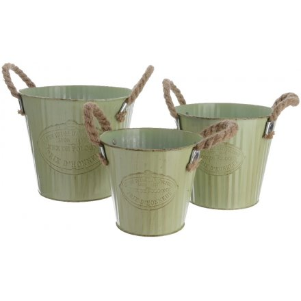 Pale Green Corrugated Buckets Set of 3