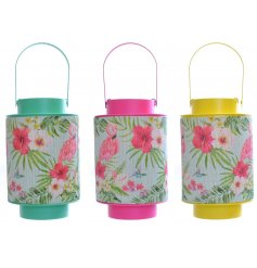 3 assorted Flamingo Bamboo Canvas Lantern