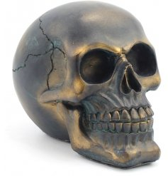 Add a punk twist to any space of your home with this stylish resin based skull ornament