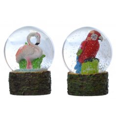 An assortment of 2 Flamingo & Parrot Snowglobes