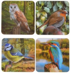 Give the gift of birds to any wildlife lover with this glossy set of coasters  Comes with a matching gift box