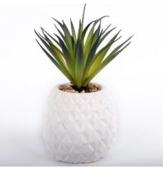 A faux succulent in a white cement pineapple pot