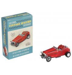From the fun and creative minds of REX international is this make your own car kit