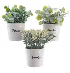 3 assorted Faux Plants in White Garden Pots
