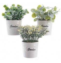 3 assorted Faux Plants in White Garden Pots