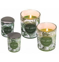 With an assorted smell of Desert Cactus Flower and Eucalyptus and Mint