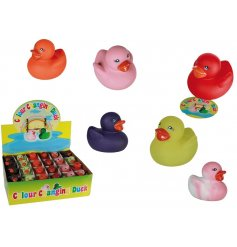 Make bath time fun again with these funky colourful squeaking rubber ducks